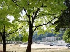 Utsikt över Saone, Lyon
