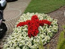 Röda korset i Monaco har en genomtänkt plantering
