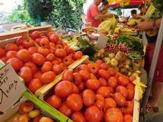Marknad i Gruissan 2