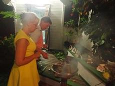 Stefan o Anna grillar