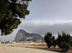 Levantens skägg hänger vid toppen av klippan i Gibraltar