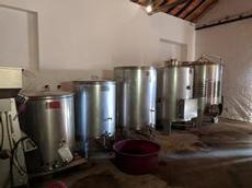 Vintillverkning i liten skala på vingården