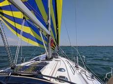 Fin gennaker segling