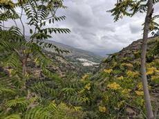 Trevlez, Spaniens högst belägna by