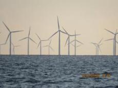 Många vindkraftverk utanför Gedster