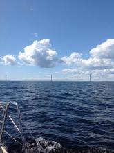 Vindkraft vid Ölands södra udde